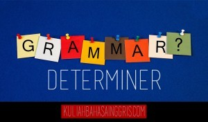 English Grammar: Pengertian, Jenis dan Contoh Determiner dalam Bahasa Inggris Terlengkap