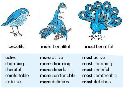 English Grammar Pengertian Superlative Adjective Dan Contohnya