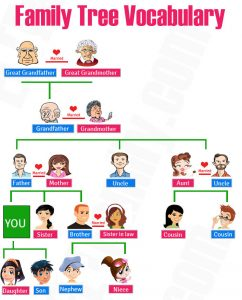 kosakata nama anggota keluarga dalam bahasa inggris beserta