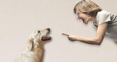12 Kata Umpatan Marah Yang Wajib Kamu Hindari Ketika