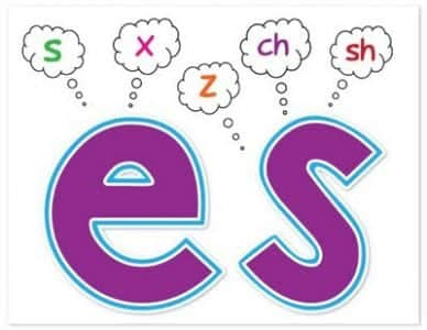 Penjelasan Aturan Penambahan S Or Es Pada Kalimat Bahasa Inggris