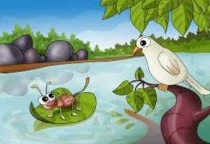 Sekali, Merpati melihat semut berjuang di dalam air. Dia kasihan semut dan merobohkan daun. Semut naik pada daun dan mencapai pantai dengan aman. Setelah beberapa hari, semut melihat pemburu bertujuan panah Merpati terbang di atas. Dia ingin menyelamatkan burung merpati. Jadi, ia sedikit pemburu kaki. Pemburu kehilangan tujuannya dan Merpati terbang dengan aman.