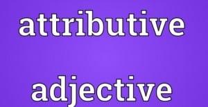 Attributive Adjective : Pengertian, Penjelasan Serta Contoh Dalam Kalimat Bahasa Inggris