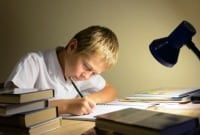 Descriptive Text : Pengertian, Tujuan, Generic Structure dan 2 Contoh Lengkap Dalam Kalimat Bahasa Inggris