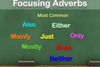 """Pengertian, Jenis, Posisi """"Focusing Adverb"""" Beserta Contoh Dalam Kalimat Bahasa Inggris"""