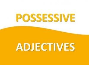 """Pengertian, Jenis Dan Contoh """"Possessive Adjective"""" Dalam Kalimat Bahasa Inggris"""