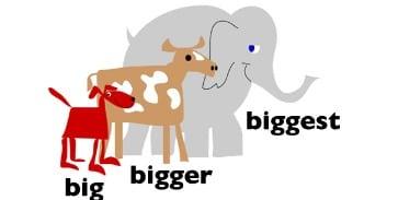 Perbedaan Antara 'Big,Bigger,Biggest' Dalam Bahasa Inggris Beserta Contoh Kalimat