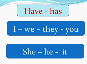 Perbedaan 'Have vs Has' Dalam Bahasa Inggris Beserta Penggunaan nya