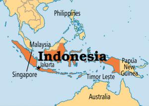 Kumpulan Terjemahan Ungkapan Bahasa Indonesia Beserta Contoh Kalimat