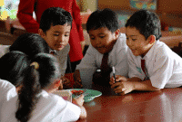 40 Soal To Be Untuk SD Kelas 4 Semester 2 Beserta Jawaban Lengkap