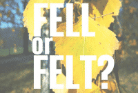 """Fell vs Felt"" : Perbedaan Dan Penggunaanya Dalam Bahasa Inggris Beserta Artinya"