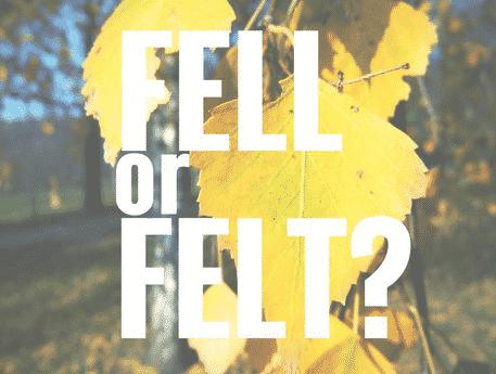 """""""Fell vs Felt"""" : Perbedaan Dan Penggunaanya Dalam Bahasa Inggris Beserta Arti Lengkap"""