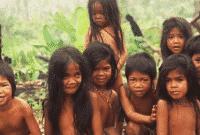 "Contoh Descriptive Text Tentang Budaya ""Suku Anak Dalam"" Dalam Bahasa Inggris Dan Artinya"
