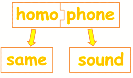 "Homophones ""Flour vs Flower"" Perbedaan Dan Penjelasan Lengkapnya"